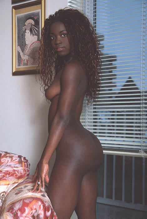 Fat hairy ebony porn